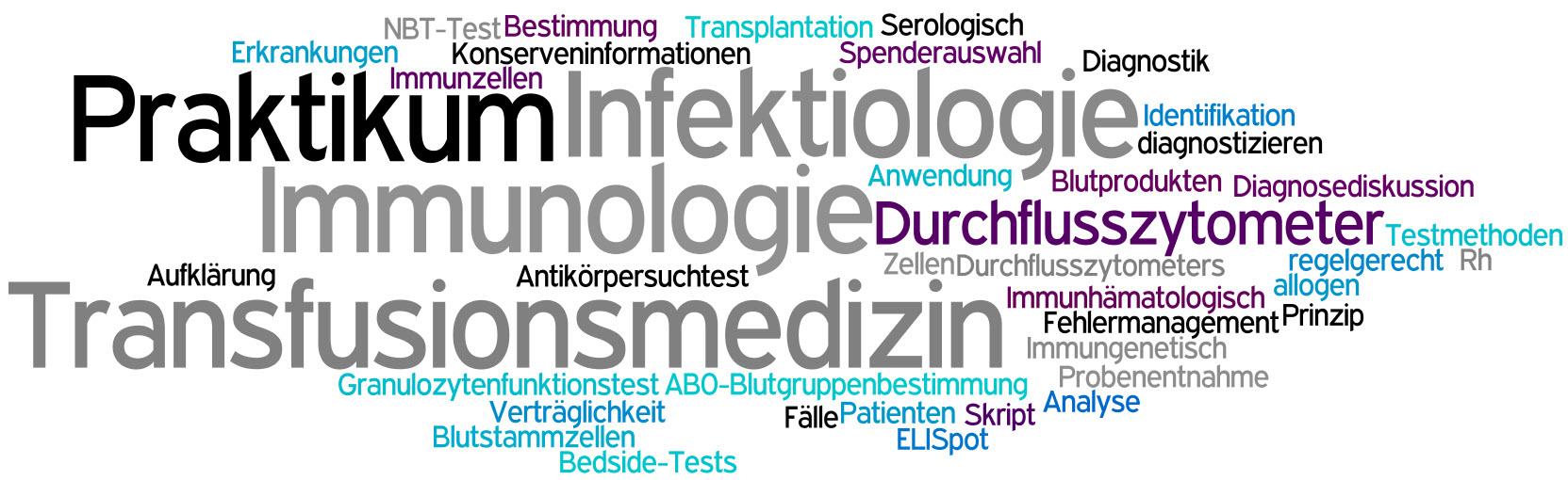 Großzügig übung 40 Anatomie Des Harnwege Zeitgenössisch - Anatomie ...